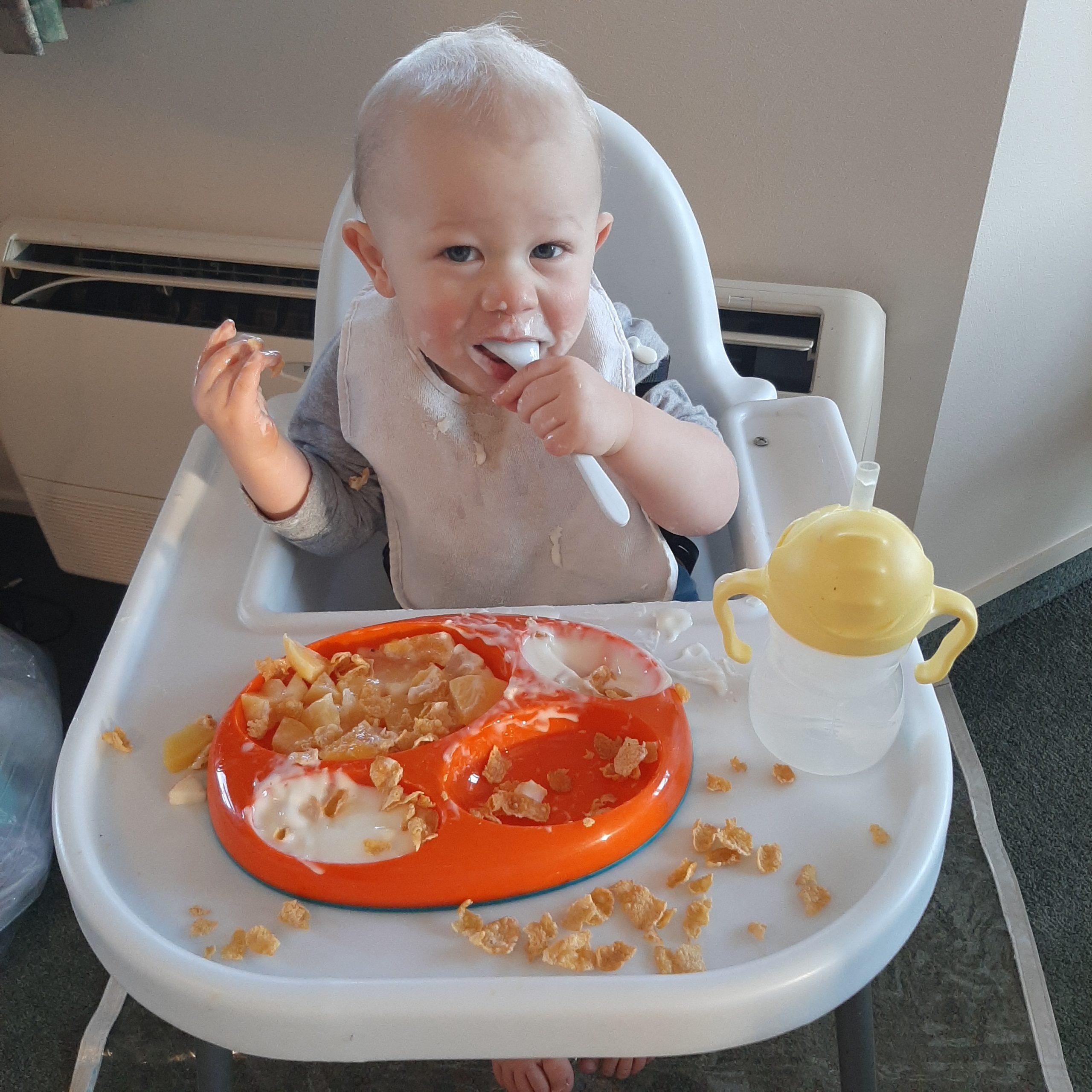 Bodhi M, 12 months, Otago